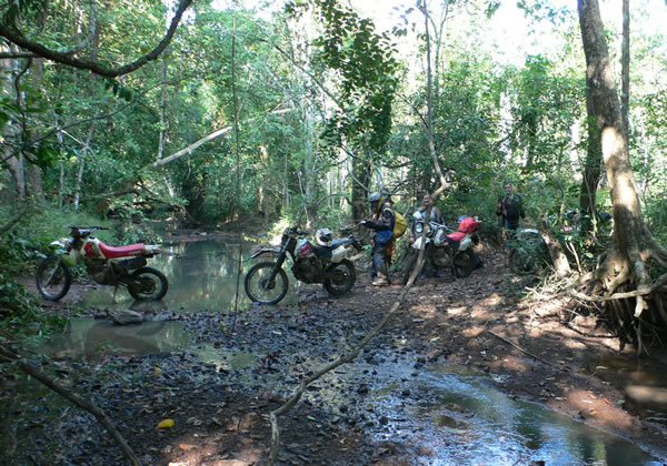 Jungle Dirt Bike Temple Tour