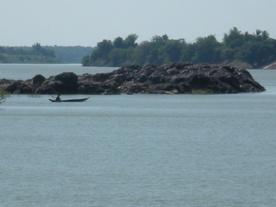 Dolphin Rocks