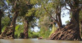 Mekong Cambodia Kayaking