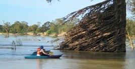 Mekong River Kayaking